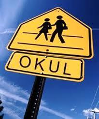 Eğitim Kurumları Güvenliği ve Okul güvenlik modeli